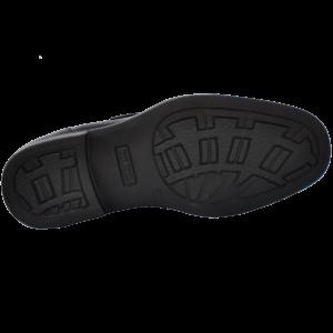 Pitbull CSX-1401